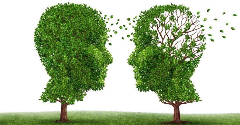 OTCs Linked to Neurodegeneration - Social Wrecker